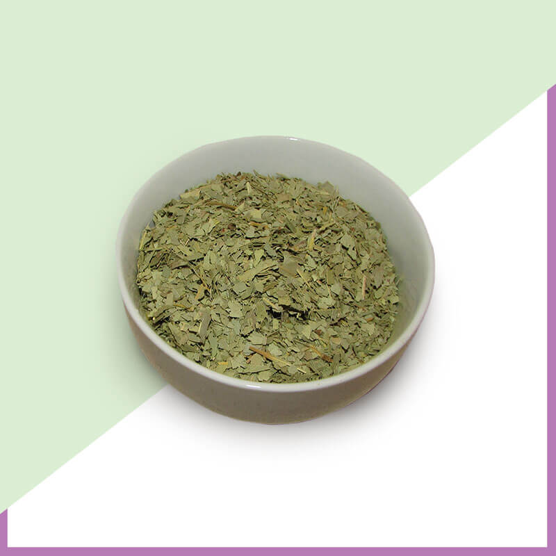 Eucalyptus-Leaf-CS-Organic-1