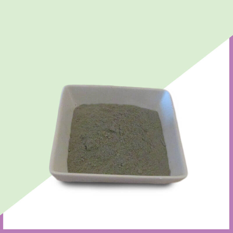 Russian-Cambrian-Blue-Clay